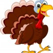 Stock Vector: Funny Turkey Cartoon posing