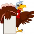 Funny Turkey Cartoon Posing with blank sign — Stock Vector #34204779