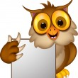 Owl cartoon with blank sign — Stock Vector