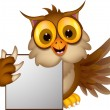 Stock Vector: Owl cartoon with blank sign