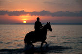 Horse riding at dusk — Stock Photo