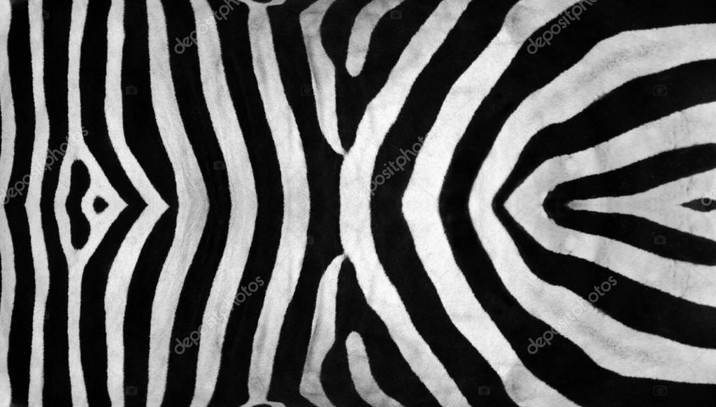 Real zebra pattern - photo#3