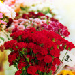 Foto Stock: Bunch of flowers