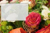 玫瑰和您自己的文本与空间空卡 — 图库照片