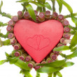 Lucky Bamboo heart shape — Stock Photo