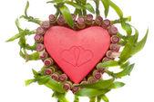 Lucky Bamboo heart shape — Stock Photo