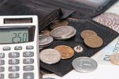 Polish money - zloty, banknotes, coins, calculator and wallet — Stock Photo