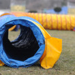 Stock Photo: Agility equipment tunnel