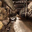 Stock Photo: Mine tunnel with path