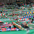 Wroclaw, POLAND - March 17: Match T-Mobile Ekstraklasbetween Wks Slask Wroclaw and Podbeskidzie Bielsko-Biala, supporters with scarf of Wks Slask Wroclaw in action on March 17, 2013 in Wroclaw, Pol — Stock Photo #28542341