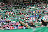 Wroclaw, POLAND - March 17: Match T-Mobile Ekstraklasa between Wks Slask Wroclaw and Podbeskidzie Bielsko-Biala, supporters with scarf of Wks Slask Wroclaw in action on March 17, 2013 in Wroclaw, Pol — Stock Photo
