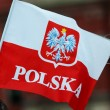 Polish flag — Stockfoto #29675181