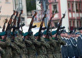Wroclaw - August 15: Gun salute (Day of Polish Army) on August 15 2013 in Wroclaw, Poland — Stock Photo