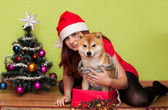 Beautiful puppy with Christmas decorations — Stock Photo