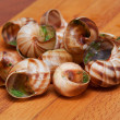 Closeup of empty baked snails with garlic butter — Stock Photo