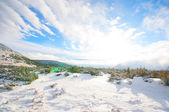 Winter landscape with blue sky and sunshine — Stock Photo