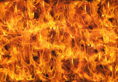 Burning fire flame — Stock Photo