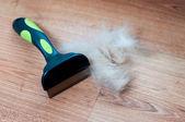 Kupie psa włosy szczotką płaszcz — Zdjęcie stockowe