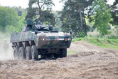Wroclaw, Poland - May 10. 2014:  AMV XC-360P Rosomak armored vehicle on Military show on May 10, 2014 in Worclaw, Poland — Stock Photo