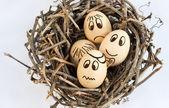 Amazing eggs — Foto Stock