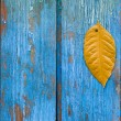 Stock Photo: Autumn leaf on woody bakground