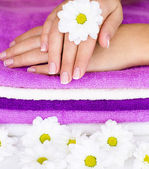 Flower on women hand — Stockfoto