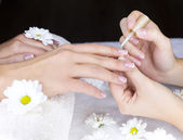 Female french manicure — Stock Photo