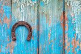 Ferro di cavallo fortunato — Foto Stock