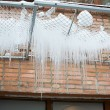 Winter icicles — Stock Photo