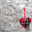 Stock Photo: Winter heart