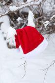 Santa hat — Stock Photo