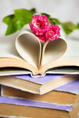 Heart from book pappers — Stock Photo