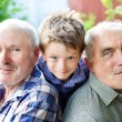 Grandson with grandparents — Stock Photo