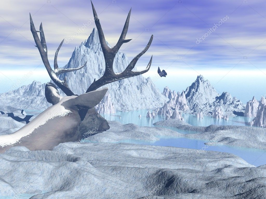 Overview of snow capped mountains with deer — Stock Photo #12360938