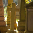 Cross on a cementary in sun - Stock Photo