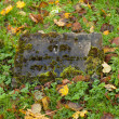 Stock Photo: Old gravestonein cementary