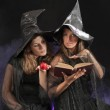 Two halloween witches on dark background — Stock Photo #12460440