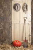 Old barndoor with spade, cowboy hat and rope, rope and pumpkin — Stock Photo