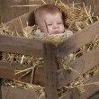 Stock Photo: Baby in crate with straw