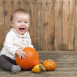 Stock Photo: Halloween baby with pumpkins
