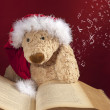 Teddy bear reading a book — Stock Photo #15322015