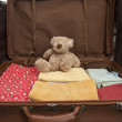 Teddy bear in a suitcase — Stock Photo