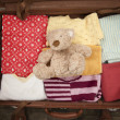Stock Photo: Teddy bear in a suitcase