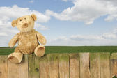 Teddy bear seated on an old wooden fence outdoors — Stock Photo