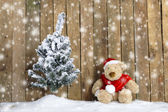 Christmas teddy bear sitting in the snow — Stock Photo
