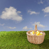 Basket with easter eggs — Stock Photo