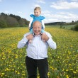 Grandfather with granddaughter on his shoulders, in a dandellion — Stock Photo