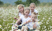 Children seated in meadow between daisies — Stock Photo