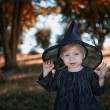 Stock Photo: Little halloween witch outdoors