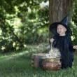 Little halloween witch outdoors with cauldron — Stock Photo #32375677